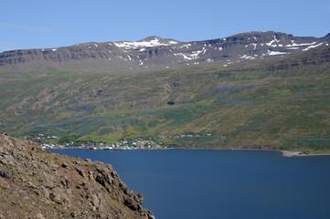 village islandais