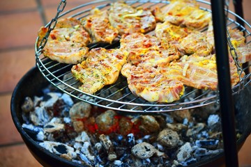 grilled caucasus barbecue close-up