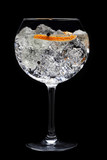 Gin tonic cocktail on black background