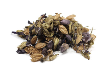 Dried seeds of purple salvia on white background