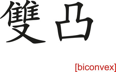 Chinese Sign for biconvex