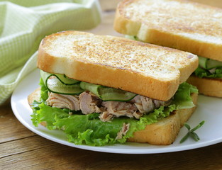 tuna sandwich with fresh cucumber and green salad