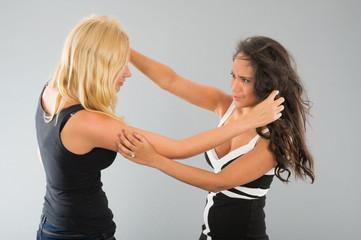 Girls having a fight