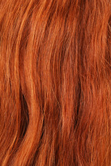 A close-up view of red hair