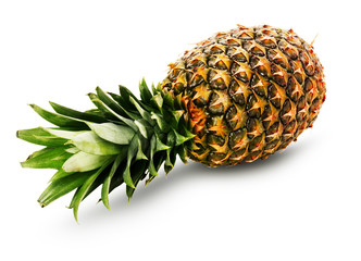 ripe pineapple isolated on the white background