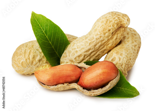 peanuts in shell isolated on the white background