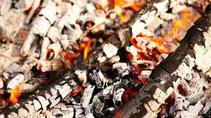 Firebrands of picnic campfire background