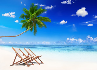 Non-Urban Scene of Tropical Beach in Summer