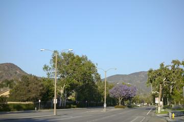 Adolfo Street, City of Camarillo, Ventura County, CA