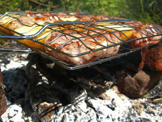 Barbeque fried on the bonfire and coals