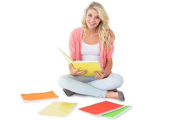 Pretty young blonde sitting and studying