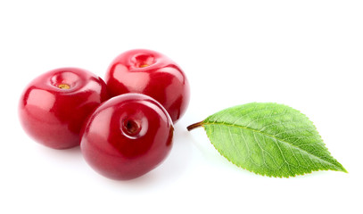 Berries of cherry and leaf.