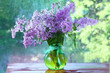 lilac in a vase on the window
