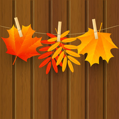 Autumn color leaves on wooden background