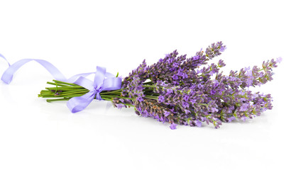 Bunch of lavender flowers with satin ribbon, on a white backgrou
