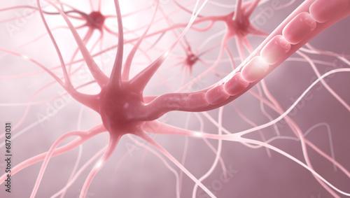 Leinwandbild Motiv Nervenzellen, Myelinscheide, Neuronen - 3D Illustration