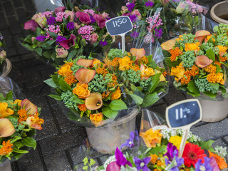 Amsterdam, Netherlands. Sale of plants in the Flower market