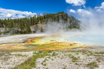 Yellowstone National Park, Utah, USA