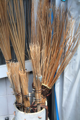 Brooms made from coconut leaf