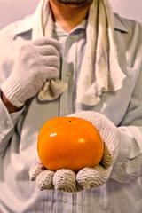 柿を持つ農夫