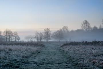 Path dawn morning haze