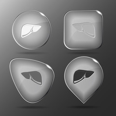 Liver. Glass buttons. Vector illustration.
