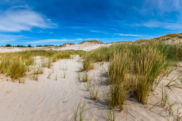 Moving dunes park near Baltic Sea in Leba, Poland