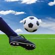 foot kicking soccer ball to goal