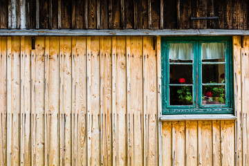 Green window with red flowers