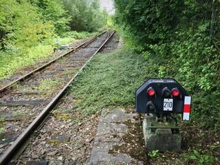 Schienenstrang für die Fahrt ins Grüne