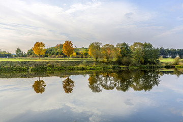 reflection of trees in river tauber