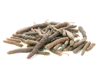 long pepper,Piper retrofractum Vahl on white background