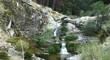 Sucesión de cascadas dentro de un bosque con rocas de granito