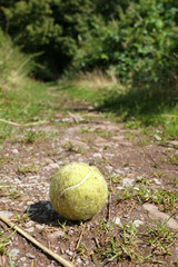 Old dog's tennis ball on a woodland path