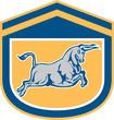 Bull Attacking Charging Shield Retro