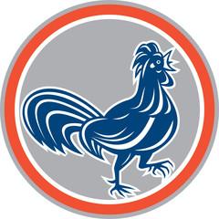 Chicken Rooster Walking Circle Retro
