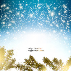Elegant Christmas background with snowflakes and branches in sno
