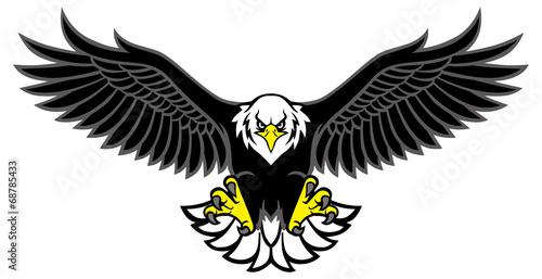 Fototapeta eagle mascot spread the wings