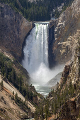 Lower Falls at Yellowstone National Park, Wyoming