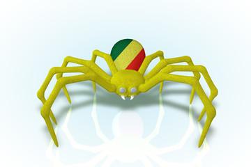 Congo Flag Spider