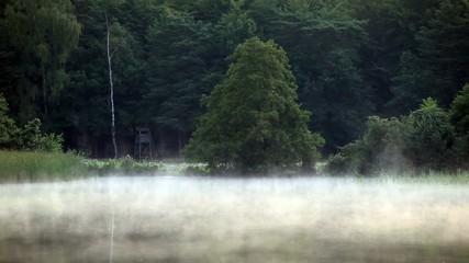 Morgengrauen am Ufer eines See