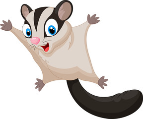 Sugar glider cartoon