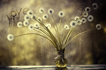 dandelions in white vase on the window © kichigin19