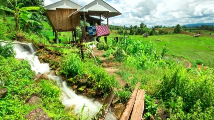Hd Time Lapse Pabongpiang Rice Field Hut Tilt Down