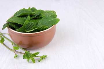 Bowl of mint leaves