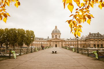"""Le pont des Arts"" with the French Institute - Paris, France"