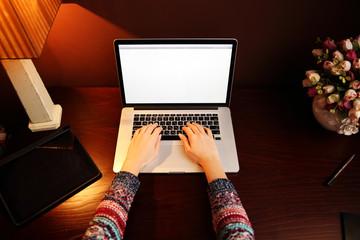 Closeup image of female hands using laptop