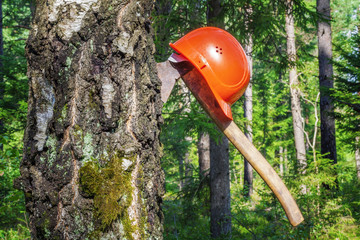 Ax carved in tree with helmet  in the forest