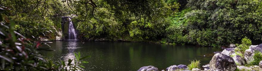 Bassin Boeuf - Ile de la Réunion