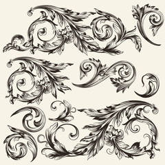 Collection of vector vintage flourishes